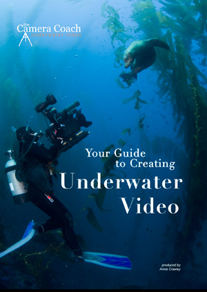 The Camera Coach Your Guide to Creating Underwater Video DVD