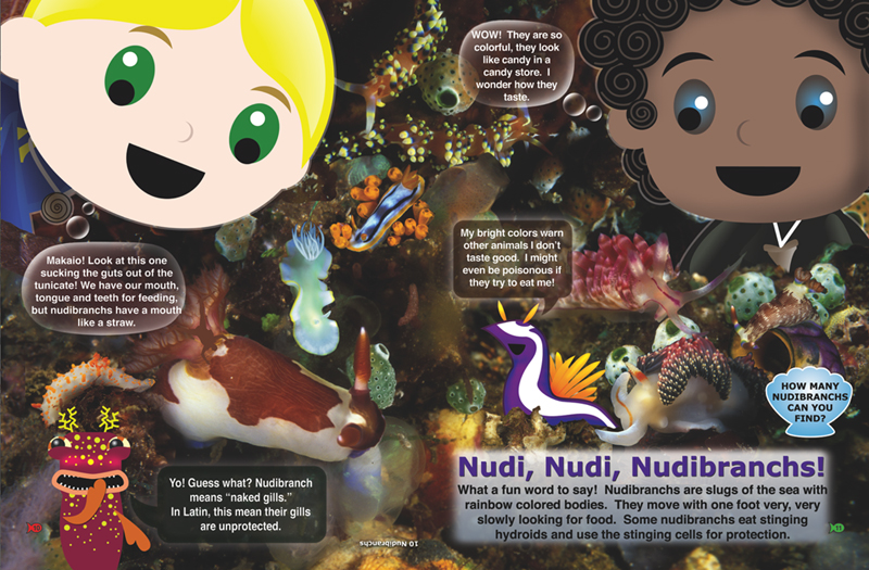 Inside Look Nudibranchs Page 10 and 11 Discover Who Lives in the Sea Book from The Adventures of Ocean Annie by Annie Crawley