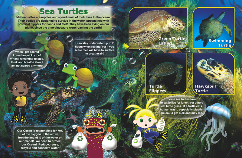 Inside Look at Turtles Page 22 and 23 Discover Who Lives in the    Sea Book from The Adventures of Ocean Annie by Annie Crawley illustrated    by J. Salvador Ramos
