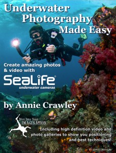 Underwater Photography Made Easy Cover Enhanced eBook