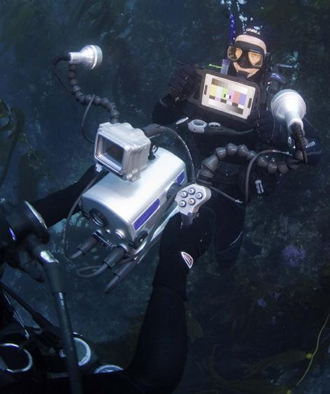 Underwater White Balance and Lighting
