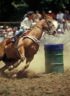 New Zealand Rodeo Photo Annie Crawley