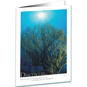 Discover Greeting Card - Underwater Photography - AnnieCrawley.com