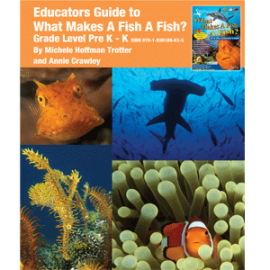 What Makes A Fish A Fish Educator Guide Grades Pre K-K Printed - What Makes A Fish A Fish Educator Guide Grades Pre K-K PDF - Educator Guide What Makes A Fish Pre K-K Cover