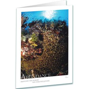 Coral Reef Greeting Card - Abundance Greeting Card - Underwater Photography - AnnieCrawley.com