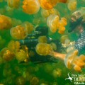Trip Leader & Scuba Diving Travel Expert