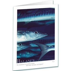 Balance Greeting Card - Inspirational Greeting Cards - Barracuda - Underwater Photography - AnnieCrawley.com