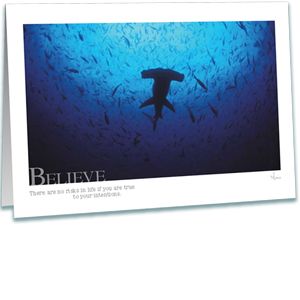 Hammerhead Shark Greeting Card - Inspirational Greeting Cards - Underwater Photography - AnnieCrawley.com