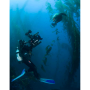 The Camera Coach® Your Guide To Underwater VideoCamera Coach