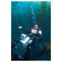 The Camera Coach® Your Guide To Underwater Video Camera Coach 01