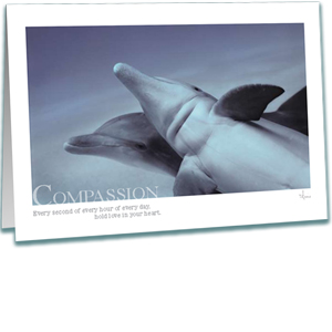 Bottlenose Dolphins Greeting Card - Underwater Photography - Compassion - Inspirational Greeting Cards - AnnieCrawley.com