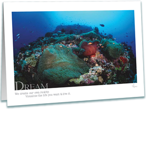 Dream Coral Reef Greeting Card - Inspirational Greeting Cards - Underwater Photography - AnnieCrawley.com