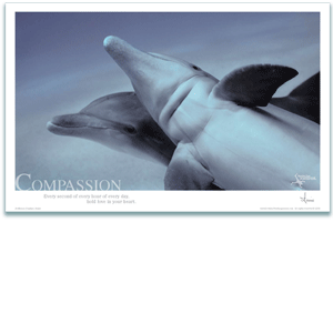Compassion Poster - Bottlenose Dolphin Poster - Inspirational Poster - Underwater Photography - AnnieCrawley.com