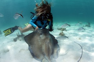 Annie Crawley Scuba Diving at Sting Ray City  in Grand Cayman
