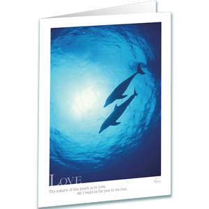 Love - Bottlenose Dolphins Greeting Card - Inspirational Greeting Cards - Underwater Photography - AnnieCrawley.com