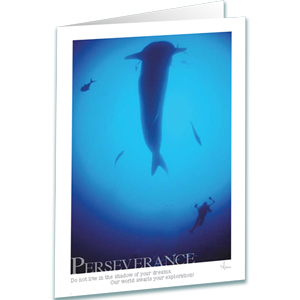 Whale Shark Greeting Card - Inspirational Greeting Cards - Perseverance - Underwater Photography - AnnieCrawley.com