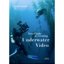 The Camera Coach® Your Guide To Underwater Video - AnnieCrawley.com