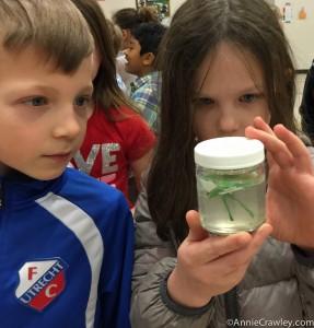 Picnic Point Elementary Plastic Garbage Ocean Annie Crawley Speaker