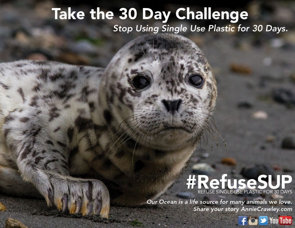 30 Day Challenge Refuse Single Use Plastic for 30 Days