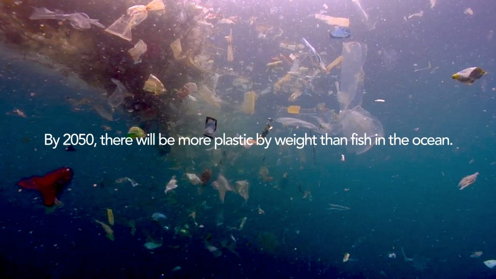 Ocean Education Reverse the Flow of Pollution More Plastic than Fish in Ocean by 2050
