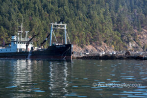 Cypress Island Cooke Aquaculture Net Pen facility.