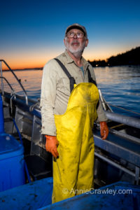 Lummi Island Wild helped with the clean up of farmed Atlantic salmon in the Puget Sound.