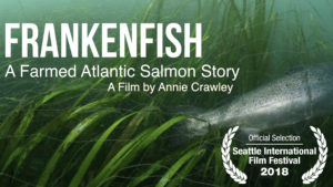 Frankenfish A Farmed Atlantic Salmo Story Seattle International Film Festival Annie Crawley